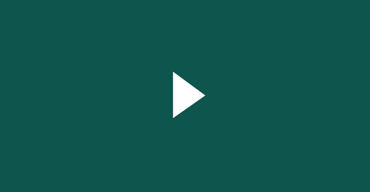 Newspeak video overlay